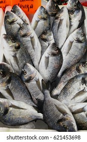 Fresh fish on the counter in the market (Nameplate - Bream)