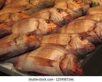 Fresh fish on display at market stall in Malaga Atarazanas market