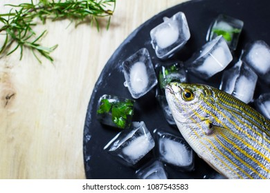 Fresh fish on ice with rosemary