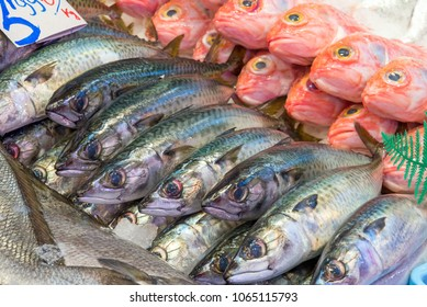 Fresh fish for sale at a market in Madrid, Spain
