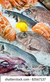 Fresh fish and seafood arrangement