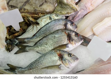 Fresh fish and seafood cooled with ice on a fishmongers slab. With blank labels for pricing or labelling