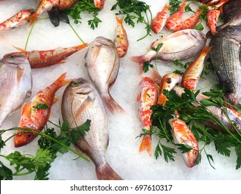 Fresh fish and seafood displayed at the market