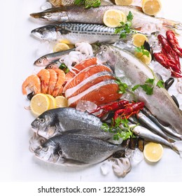 Fresh fish and seafood. Healthy eating concept. Flat lay