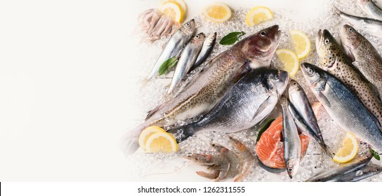 Fresh fish and seafood. Healthy eating. Top view  with copy space. Panorama, banner