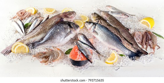 Fresh fish and seafood on white wooden background. Healthy eating. Top view