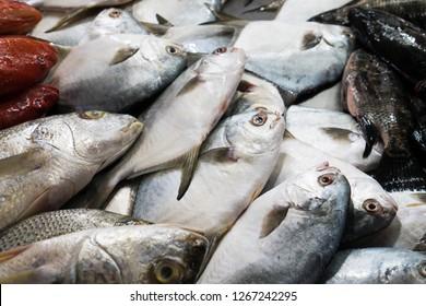fresh fish at wet market