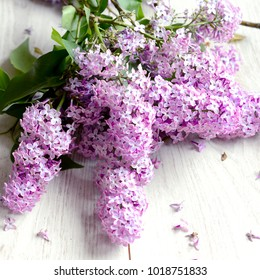 Fresh flowers of lilac on a wooden background