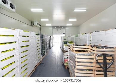 Fresh Food in Boxes at Pallets Cold Storage