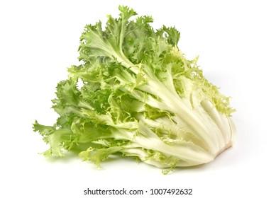 Fresh Frisee lettuce. Crispy endive. Close-up, isolated on white background.