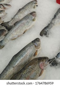 Fresh frozen fish lies on a counter for sale in a supermarket