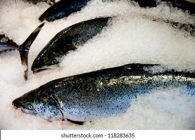 Fresh frozen fish processing and conditioning