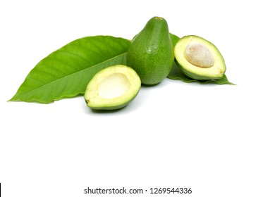 Fresh Fruit avocado