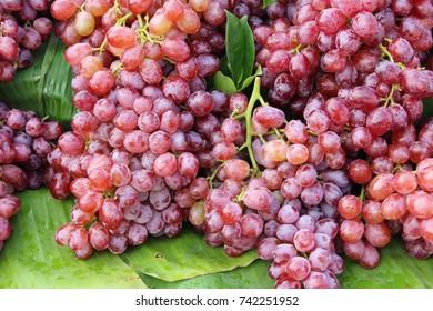 Fresh fruit grapes