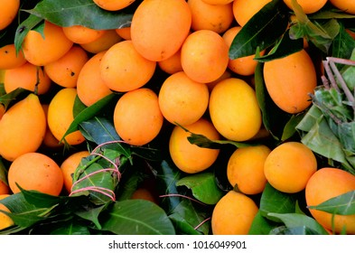 Fresh fruit from the market it is Marian Plum or Gandaria. Fruit is sweet and crisp when ripe fruit will be  yellow and orange.