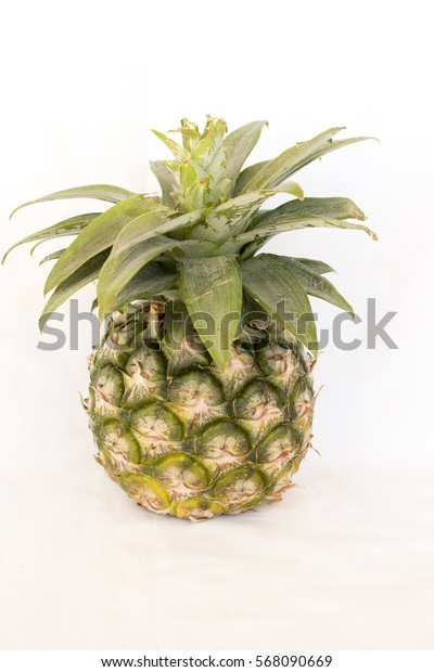 fresh fruit is the pineapple plant on background white