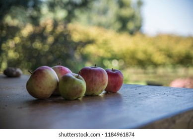 fresh fruits on the table - Shutterstock ID 1184961874