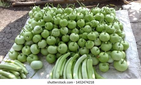 fresh and full green loki looking beautiful