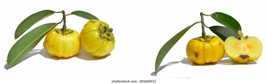 Fresh Garcinia cambogia isolated on white background