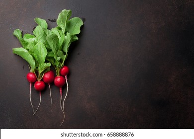 Fresh garden radish. Top view with copy space