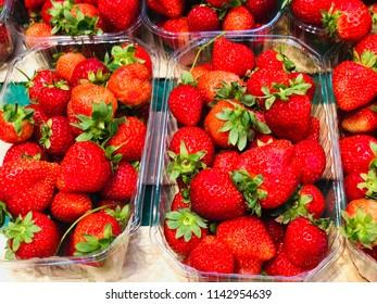 Fresh garden Strawberries