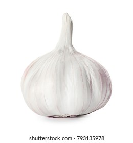 Fresh garlic head on white background