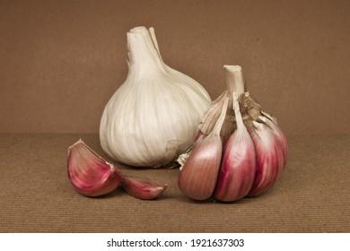 Fresh garlic isolated on brown background. Raw whole garlic closeup