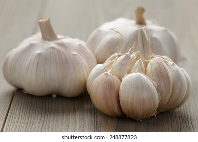 fresh garlic on wood table