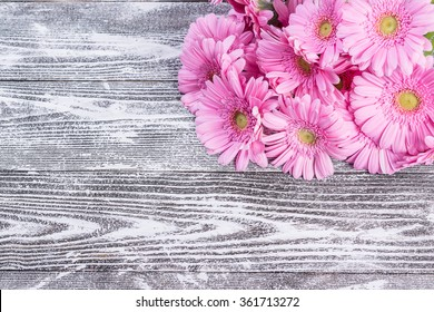 Fresh gerbera flowers on wooden background, flower border, floral background with place for text
