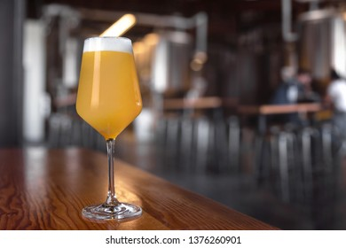 Fresh golden unfiltered craft beer served on brewery bar, NEIPA with copy space