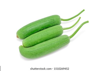 Fresh gourd,  Luffa, Sponge gourd or Vegetable sponge isolated on white background with clipping path. Selective focus.