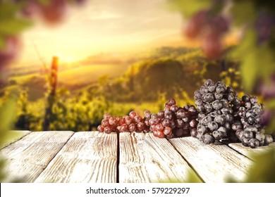 Fresh grapes fruits and vineyard