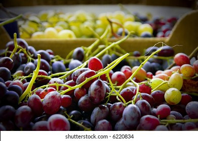 fresh grapes are picked and readily for eat