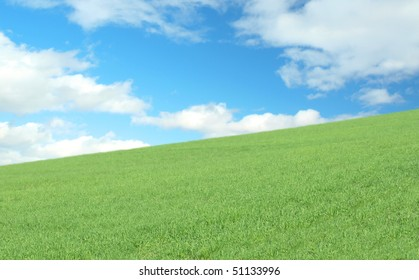Fresh grass and sky