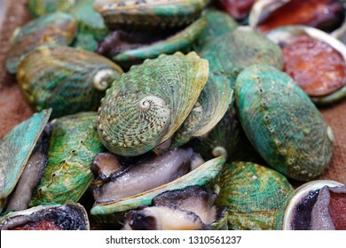 Fresh green abalone shell for sale at a fish market in Sydney, Australia