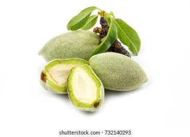 Fresh green almonds nuts isolated on white background
