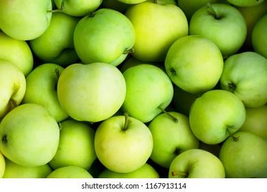 Fresh green apple harvest background