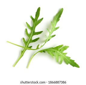 fresh green arugula leaves isolated on white background, top view