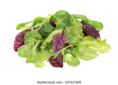 Fresh green baby leaves of endive, rocket and lettuce salad isolated on white background