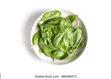 Fresh green baby spinach bundle isolated in bowl on white top view. Vegetable banner or heading design. Copy space. Studio shot. Healthy and natural food concept.