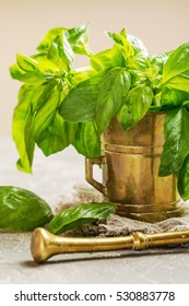 Fresh green basil in old metal mortar on gray background
