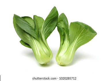 Fresh green bok choy (chinese cabbage) isolated on white background