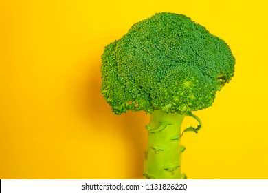 fresh green broccoli on yellow background