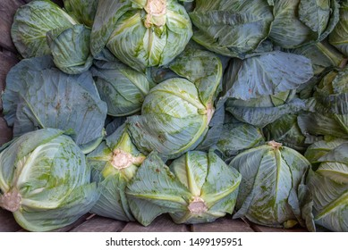 Fresh Green Cabbages in a Farmer's Market