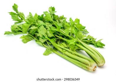 Fresh green celery isolated on white background.