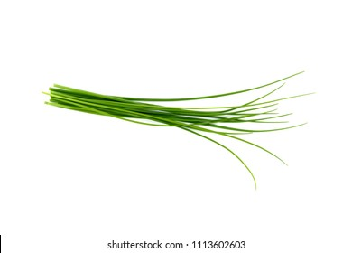 Fresh green chives, garden herbs, Isolated against a white background.