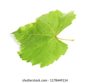 Fresh green grape leaf isolated on white