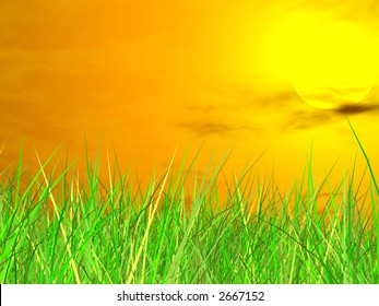 Fresh green grass on blue sky background