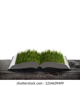 Fresh green grass on the pages of an open magical book. Ecology and education concept.