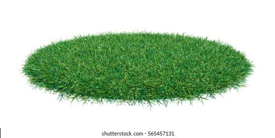 Fresh green grass on white background. 3D illustration. Empty space for your product or text